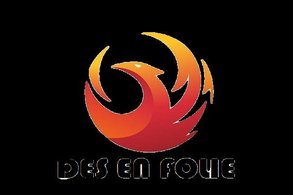 www.des-en-folie.fr